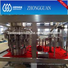 Línea de llenado de embotellado automático de jugo de fruta con opción de calidad de pequeña capacidad
