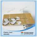 Plastic Clear Card/ Clear Matt Frosted Card/ ID Card