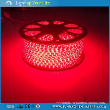 Garden Decoration Light LED Flexible Strip