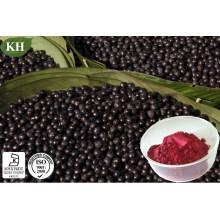 Alto Polifenol antioxidante natural 20%, 40% Acaiberry Extracto