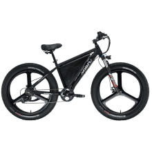 Elektrisches faltbares Fettreifen-Fahrrad