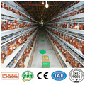 Commercial Layer Hen Chicken Battery Cage
