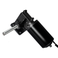 Maintex 24V Brushed Worm Gear Motor