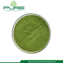 Rich dietary fiber green wheat grass  powder