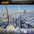 Kernloser kleiner Windkraftgenerator 300W