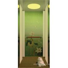 Villa Residential Home Elevator Lift