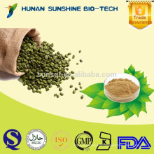 Alibaba China Pure halal green coffee bean extract with Weight Losing Function