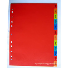12 Pages Colored PP Index Divider With Month Printed (BJ-9023)