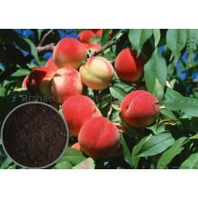 Органическое удобрение на основе NPK