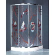 Diseño especial de vidrio templado cuadro de ducha de pintura (h018)