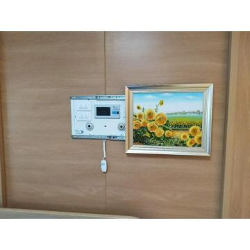 High Quality Mural Type Bed Head Unit Koszt