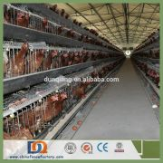 Trade Assurance Chicken Farm Poultry Equipment Suppliers