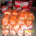 2016 Crop Best Selling Fresh Carrots