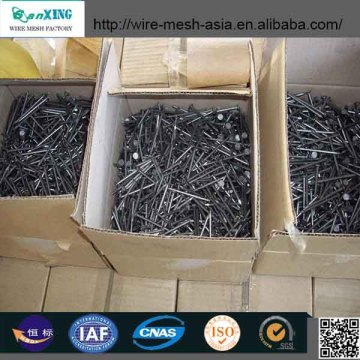 Sanxing Superior Quality Common Nails