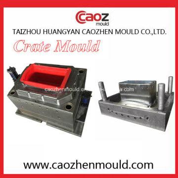 Moule / moule en caisse de poisson haute qualité / durable / plastique