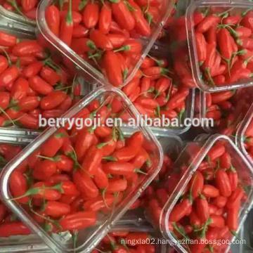 Frozen goji berries