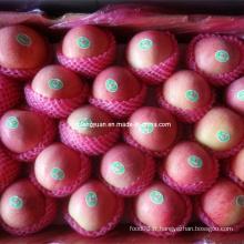 Emballage de carton de haute qualité Apple Fresh Qinguan