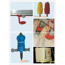 Automatische Nippel-trinkende Ausrüstung für Broiler