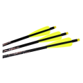 EXCALIBUR - FIREBOLT ILLUMINATED CARBON ARROW 3PK