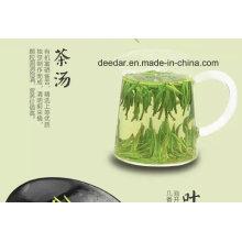 Thé vert organique