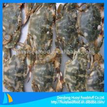 Fornecedor de caranguejo fresco congelado
