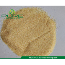 100% pure dehydrated garlic powder 40-80Mesh