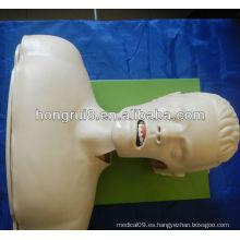 Simulador de la intubación de las vías respiratorias (manejo de las vías respiratorias, modelo anatómico)