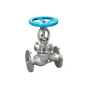 Bolted Bonnet Stainless Steel Globe Valve