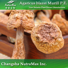 Natural Agaricus Subrufescens Extract (30% Polysaccharides)