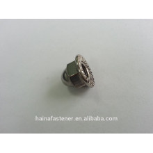 stainless steel hex flange cap nut