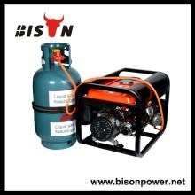 BISON (CHINA) generador eléctrico de gas