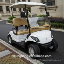 Voiturette de golf 2200W 2 places