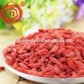 Ningxia fabricante suministra chino wolfberry