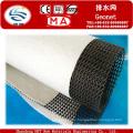 HDPE Plastic Geocomposite Geonet Manufacturer