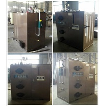 Vertical Biomass Steam Boiler