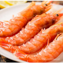 Frozen On Board Whole Argentina Red Shrimp L1