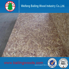 Construction Grade OSB with Competitive Price From Chiina
