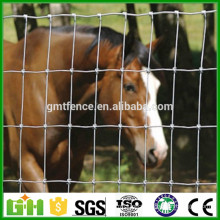 Factory Supply Grassland Fence/ Sheep Wire Mesh fence/Field Fence