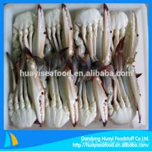 Crabe de natation bleu frais à moitié réduit