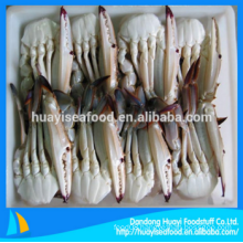 fresh cheap frozen half cut blue swimming crab