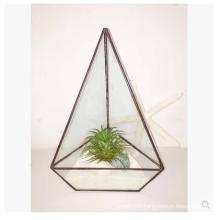 Square Glass Plant Terrarium  Style Planter Box