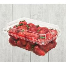 Erdbeerverpackungsbox aus Kunststoff für Obstladen