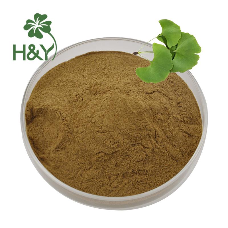 ginkgo biloba extract (2)