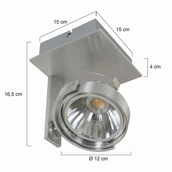 1lt LED Adjustable Spot Light
