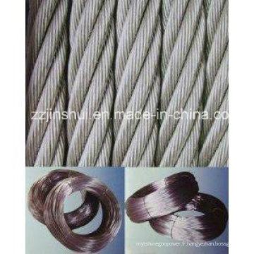 Fil électro-galvanisé / acier inoxydable / 304 acier inoxydable 316