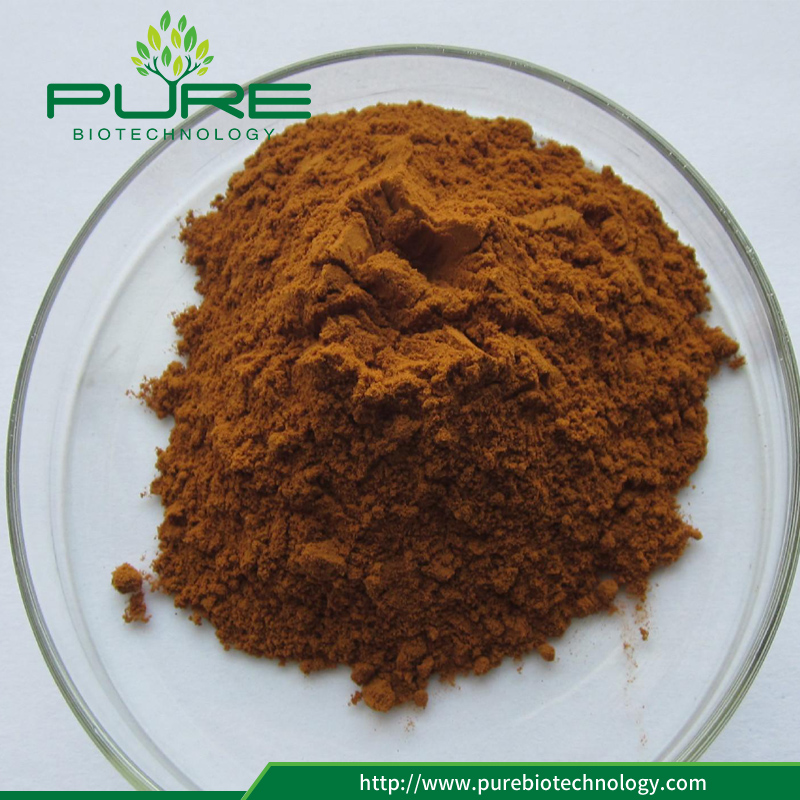 High Quality Rhodiola Rosea Extract