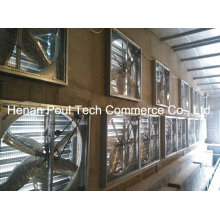 Poultry Farm Equipment Ventilation Fan System