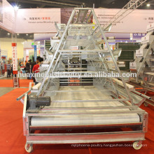 highly quality clean chicken manure machine with PP belt