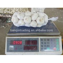 New Garlic Rate in Jinxiang