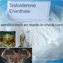 Anabolic Steroid Liquid Test Enanthat Testosterone Enanthate for Gaining Muscle